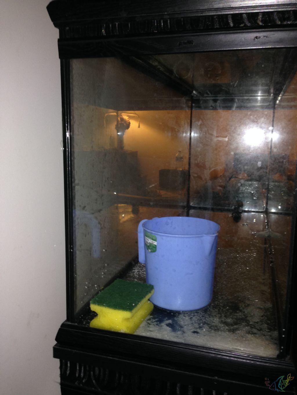 Bir akvaryum için kendinden kompresör nasıl yapılır