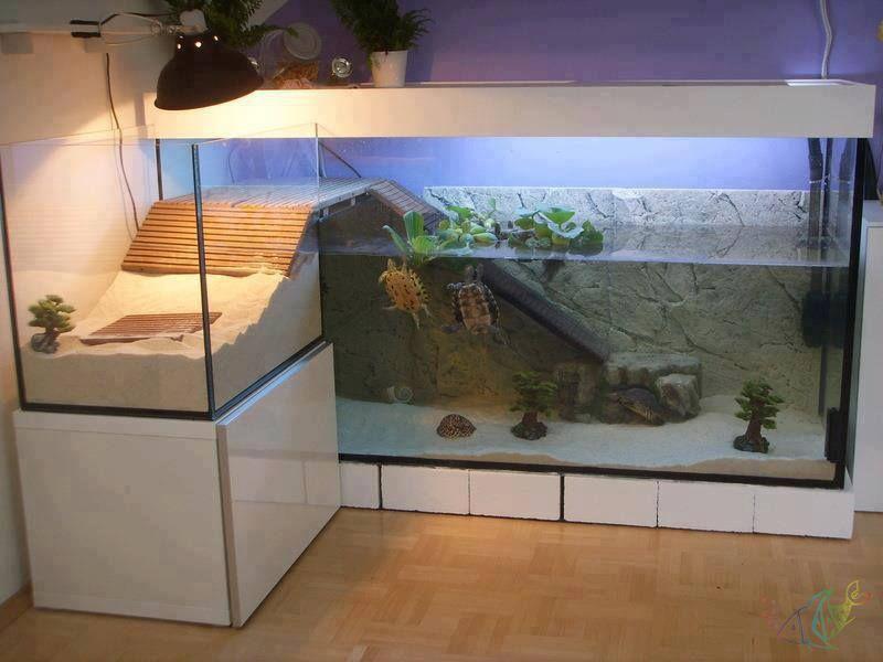 Как сделать аквариум своими руками в домашних для черепахи 95